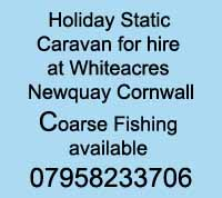 Holiday Static Caravan Hire (Newquay Cornwall)